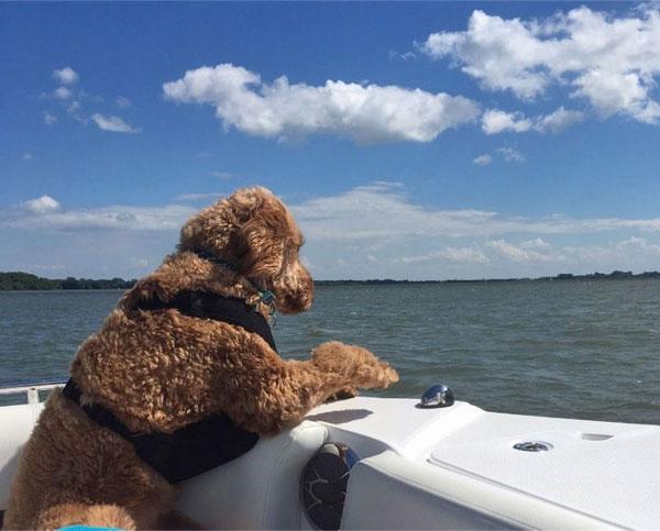 Juliette en bateau sur le lac Saint-Pierre