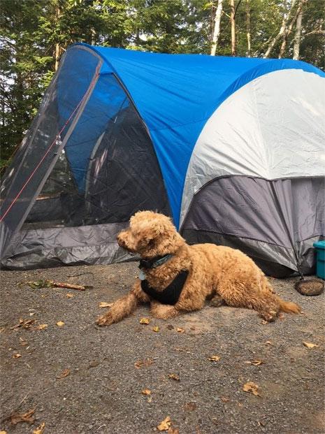 Juliette en camping