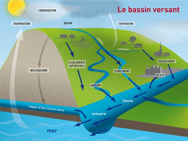 Le bassin versant (source : Plancton du monde)
