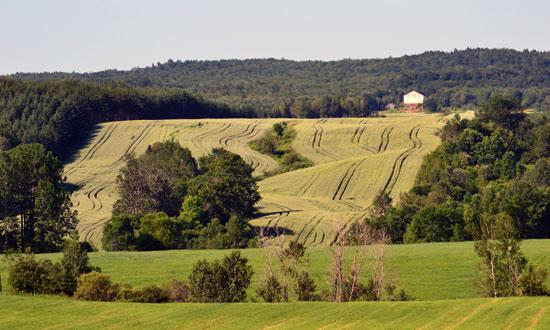 Agriculture à Saint-Édouard-de-Maskinongé