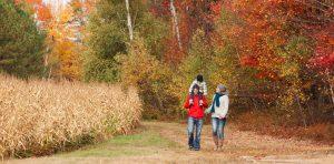Un automne haut en couleur!